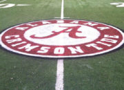 Templine Turf Paint – Alabama