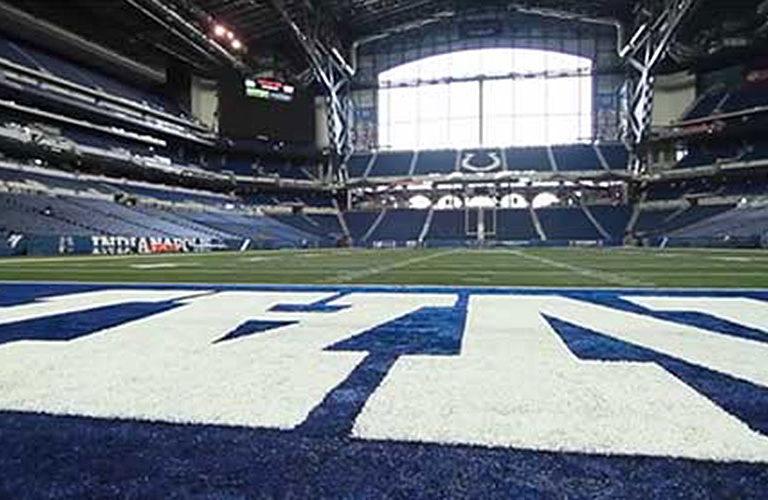 Templine Turf Paint – Indianapolis Colts