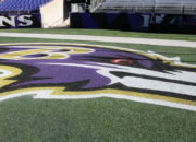 Templine Turf Paint – Baltimore Ravens