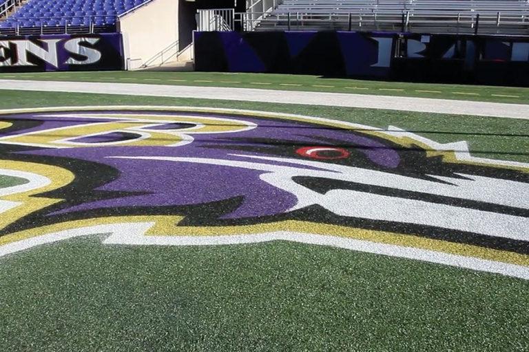 Templine Turf Paint – Baltimore Ravens