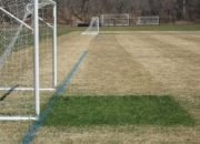 GrowthCover-Greenjacket-goalmouth_270-694-130